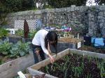 garden-005